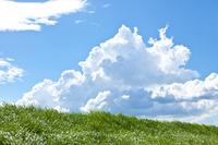 Summer cloud Stock photo [2732818] Summer