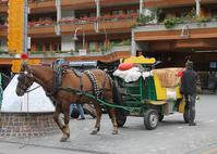 Horse-drawn carriage that runs the Swiss Zermatt city Stock photo [2734383] Switzerland
