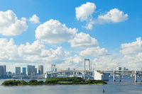 Rainbow Bridge of Odaiba Seaside Park that blue sky spreads Stock photo [2736201] Landscape