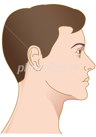 男性頭部横顔 イラスト素材 2816112 フォトライブラリー Photolibrary