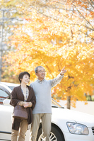 Senior couple overlooking the autumn leaves Stock photo [2818674] Person