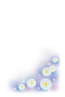 Kogiku postcard template [2820732] Chrysanthemum