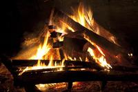 Bonfire Stock photo [2825937] Bonfire