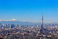 Tokyo Sky Tree and Mount Fuji stock photo