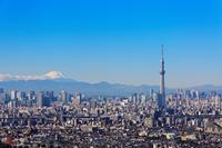 Tokyo Sky Tree and Mount Fuji Stock photo [2827690] Mt.