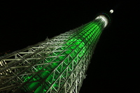 Sky Tree Stock photo [2903124] Christmas