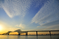 Tokyo Gate Bridge and scales cloud Stock photo [2903480] Firmament