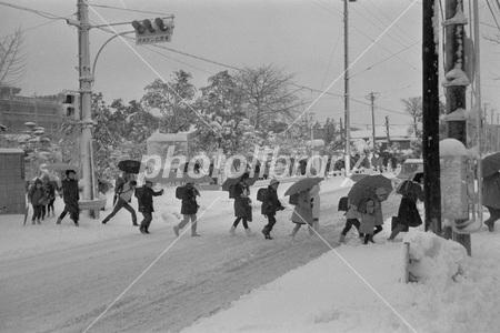 東京 大雪 1968年 写真素材 [ 2991301 ] - フォトライブラリー ...