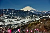 松田さくら祭りと雪景色