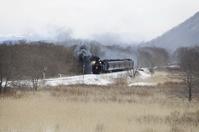 Winter of wetlands issue running the Kushiro Stock photo [2990454] Hokkaido