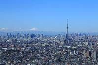 Tokyo urban landscape Sky Tree and Mount Fuji stock photo