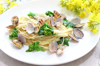 Rape flowers and a clam spaghetti Stock photo [3069421] Spaghetti