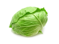 Cabbage Stock photo [3070518] Cabbage