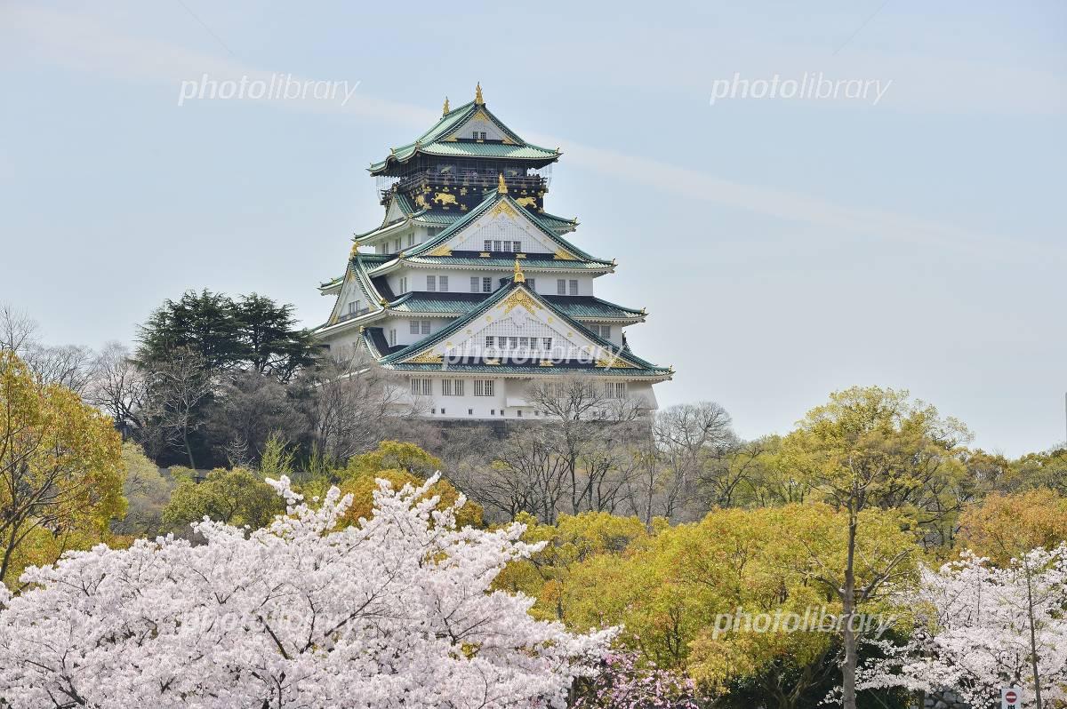 Spring of Osaka Castle Photo