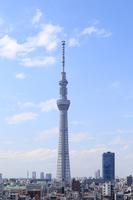 Tokyo Sky Tree Stock photo [3164338] Tokyo