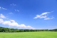 Grassland and blue sky Stock photo [3164588] Blue