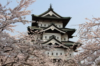 Hirosaki Castle and cherry blossoms Stock photo [3166743] Hirosaki