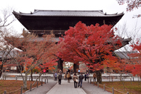 Kyoto Nanzenji Sanmen and autumn leaves Stock photo [3274137] Nanzen