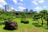 Kyu Shiba Rikyu Garden Stock photo [3279017] Shibarikyu