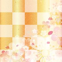 Checkered New Year [3373187] New