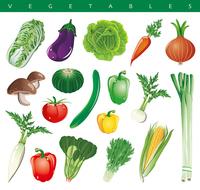 Vegetables icon [3457008] Cuisine