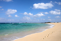 Amami Oshima soil Sheng coast Stock photo [3458865] Beach