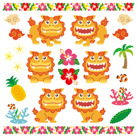Cute material Okinawa [3552648] Okinawa