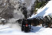 SL Christmas Train of Ban'etsu West Line Stock photo [3553508] Christmas