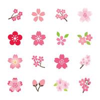 Sakura material [3553594] Cherry