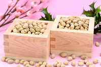 Events Setsubun roasted soybean Stock photo [3554246] Traditional