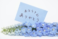 Message card and blue flowers Stock photo [3775200] Message