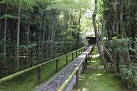Daitokuji high-tung Institute Stock photo [3892984] Kyoto