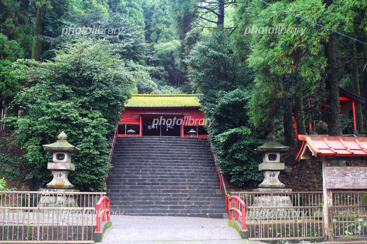 四十九所神社 写真素材 [ 406671...