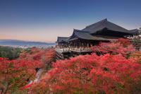 Fall of Kiyomizu Temple stock photo