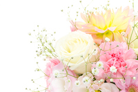 flower arrangement Stock photo [4147864] Rose