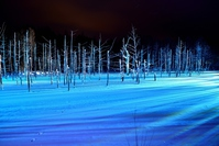 Blue pond winter light up Stock photo [4183286] Blue