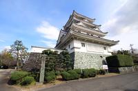Awa Kawashimashiro Stock photo [4191191] Kawashimashiro