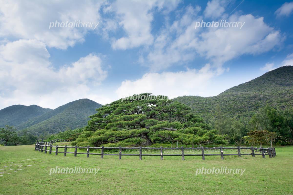 伊平屋島の北緯27度線 写真素材 [ 4066243 ] - フォトライブラリー ...