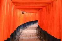 Japan Kyoto Fushimi-Inari Thousand torii Stock photo [4285982] Japan
