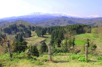 Want from Kasugayama Castle Northern Alps Stock photo [4372858] Kasugayama