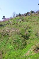 Kasugayama Castle Stock photo [4372863] Kasugayama