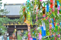 Landscape Tanabata festival of Japan Stock photo [4530185] Tanabata