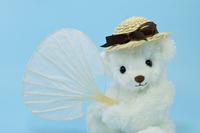 Polar bear with a plain fan Stock photo [4532930] Polar