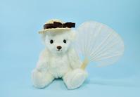 Polar bear with a plain fan Stock photo [4532935] Polar