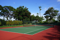 Hawaii Tennis Court Stock photo [4540496] Tennis