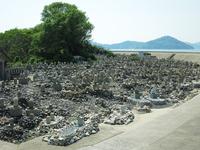 Both burial systems cemetery of the Seto Inland Sea Sanagijima Nagasaki settlement Stock photo [4541764] Shikoku