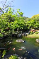 Hayama Shiosai Park Stock photo [4604003] Hayama