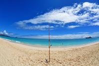 ハワイで釣り