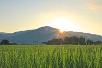 Mount Miwa Stock photo [4608831] Mount