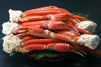 Snow crab Stock photo [4671454] Crab